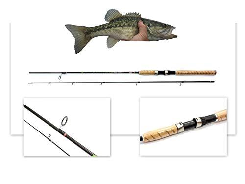 Caña de pescar Neco, 100% fibra de carbono, longitud 2,1 m, peso 5-15 g, construcción de 2 componentes, peso 105 g, peso 105 g, incluye estuche 11165