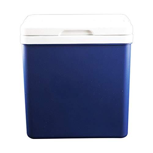 WEI-LUONG Mini nevera 10l refrigerador para refrigerador al aire libre pequeño incubador portátil de automóviles para el hogar medicina cosméticos almacenamiento salvaje barbacoa de pesca caja de alma