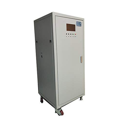 youyeetoo Máquina de degradación de Aceite de Cacahuete aflatoxina YH-PE300S