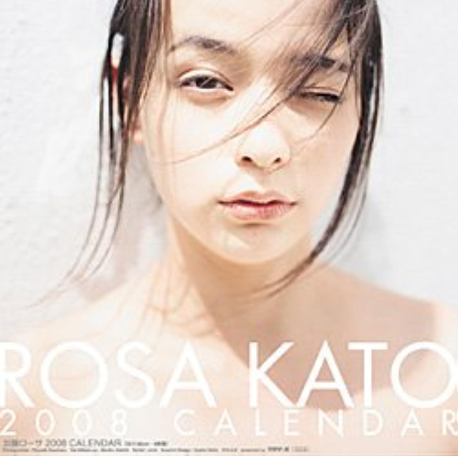 すばらしいです気付くリレー加藤ローサ 2008年カレンダー