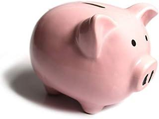 b02b120e1 Amazon.com  piggy bank