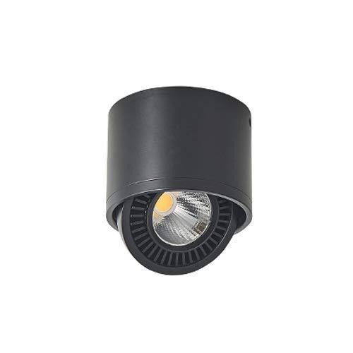 ChangHua1 Foco LED montado en Superficie Lámpara de Techo Foco único Lámpara de Techo de mazorca Ajustable Lámpara de Sala de exposiciones de Invitados Pasillo Porche Fondo de Pared Foco pequeño
