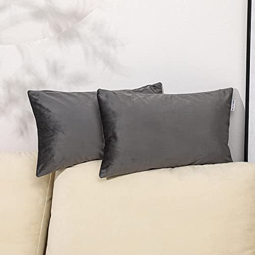 QUALKNOY Funda de cojín de terciopelo gris, funda de cojín decorativa para sofá o dormitorio con cremallera oculta, 30 x 50 cm, juego de 2 unidades