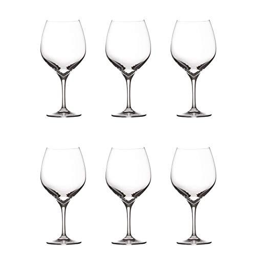 Maxwell Williams Vino Flûtes à champagne en verre Lot de 6 verres à champagne Prosecco dans une boîte cadeau, transparent, Pinot Noir Glasses