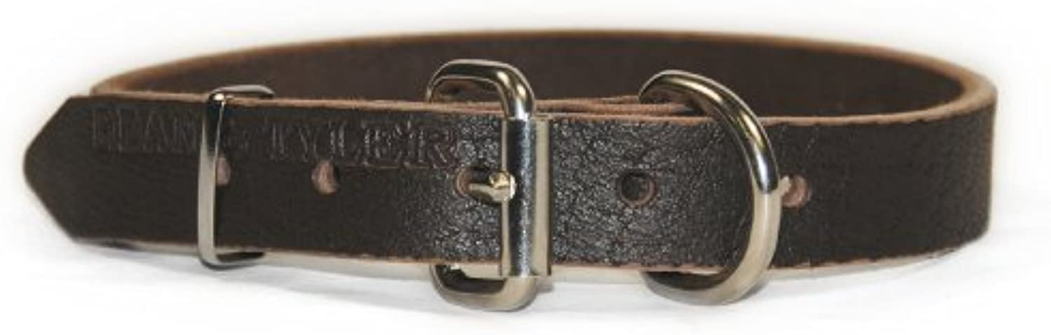 Dean and Tyler  B and B , Basic Leather Dog Collar with Strong Nickel Hardware  Brown  Size 61cm by 3cm  Fits Neck 56cm to 66cm
