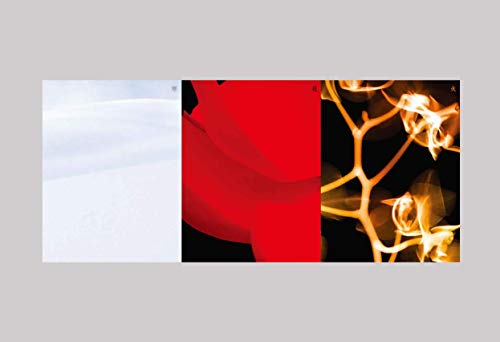Cube Ent (G) I-DLE - I Burn (4º Mini álbum) álbum+póster plegado+juego de tarjetas fotográficas adicionales (Flower ver.)