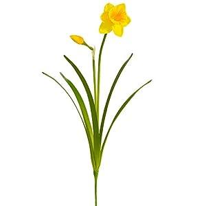 SilksAreForever 19″ Silk Narcissus Daffodil Flower Stem -Yellow (Pack of 12)