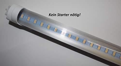 LED Leuchtröhre [kein Starter nötig!] Farbe 6000 K Prisma Cover T8 Länge 72 cm (720mm) Farbreinheit CRI >80 Durchmesser 26mm Sockel G13