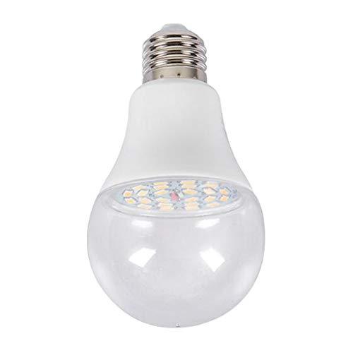KESOTO Überwinterungslampe Pflanzen Wachstumslampe Glühbirne, Perfekt für Überwinterung oder Jungpflanzenanzucht - Natürliches Licht