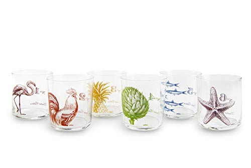 Excelsa Faune & Flore - Juego de 6 vasos de agua, 370 ml, cristal, multicolor
