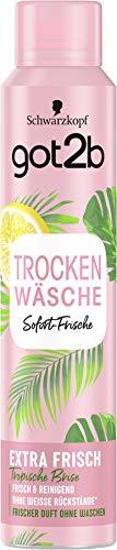 Schwarzkopf got2b Trockenshampoo Trockenwäsche Extra Frisch, 1er Pack (1 x 200 ml)