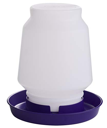 Little Giant 1 Gallon Complete Plastic Poultry Waterer