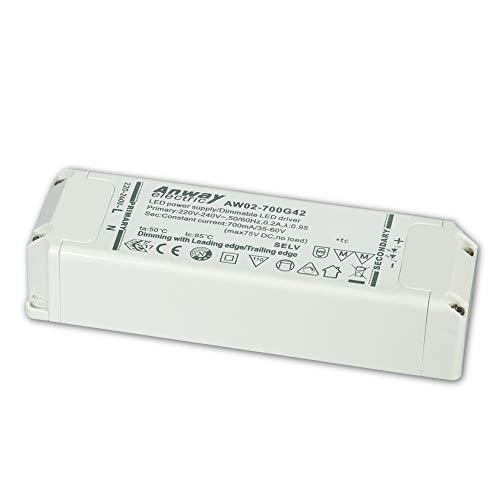 Anway LED Treiber AW02-700G42 42W/700mA/35-60V