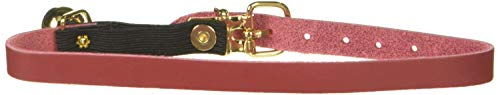 OmniPet Signature Leather Safety Stretch Cat Collars with Bell, Red, 10-12