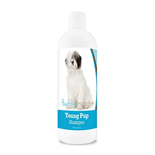 Healthy Breeds Old English Sheepdog Young Pup Shampoo 8 oz