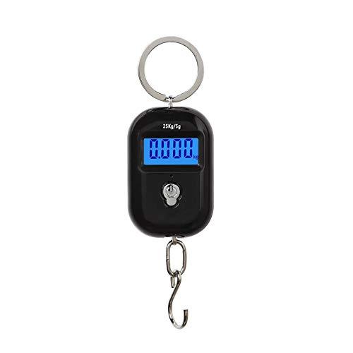 25kg / 5g Mini elektronische Hängewaage Micro Portable Waage Digitale Hakenwaage Genaue Lebensmittelwaage mit Schlüsselbundring