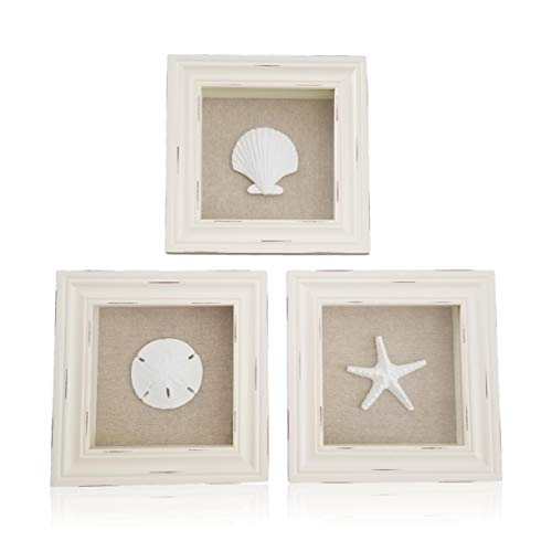 Beachy Set of 3 Shell Shabby Chic Shadow Boxes- Off White Frame 7' x 7' - Starfish, Sand Dollar and Clam Shell Mounted on Fabric Background by Tumbler Home
