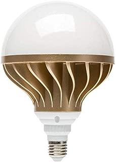 Best led replacement for 300 watt halogen bulb Reviews