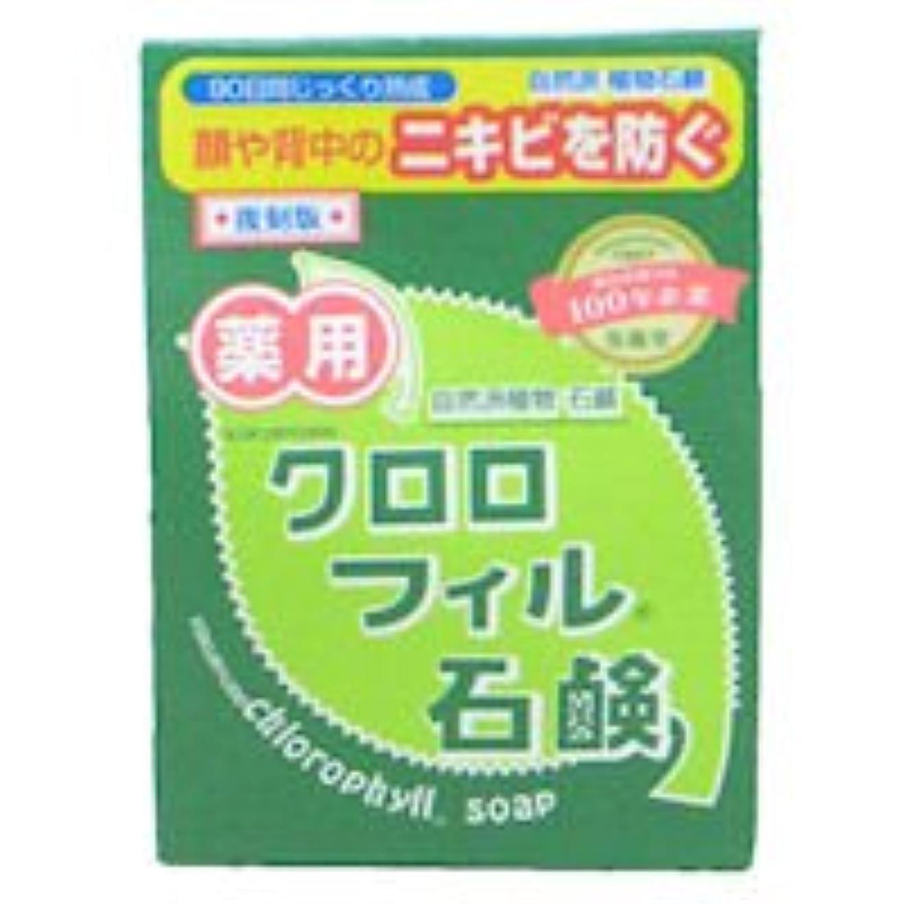 頑固なボール熟した【黒龍堂】薬用 クロロフィル石鹸 85g