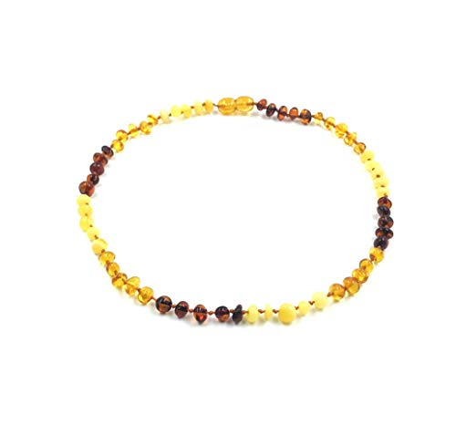 Amber Jewelry Shop Baltic Amber Necklace (Unisex) 13 inches/Certified Genuine Baltic Amber Necklace (Red, Yellow, Honey)