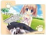 Evangelion Premium Figure Evangelion EVA series PM Sega (all two full set) (japan import)