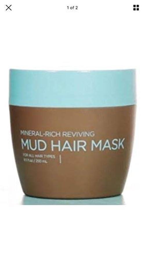 花束リード払い戻しSEACRET(シークレット) ヘアー マット マスク MUD HAIR MASK 250ml ヘアーダメージに効果あり