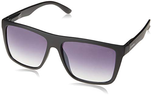 Óculos de Sol Risler, Les Bains, Masculino