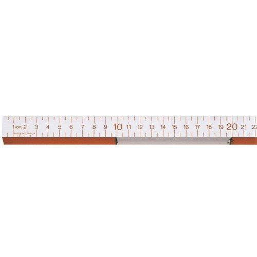 image about Printable Meter Sticks identify Meter Adhere: