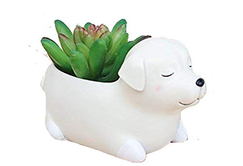 Clound city Labrador Dog Planters Animal Shaped Cartoon Succulent Planter Pots for Office,Window,Kitchen and Balcony (1pcs) (style12)