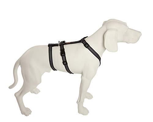 Feltmann No Exit ausbruchsicheres Hundegeschirr für Angsthund, Sicherheitsgeschirr für Pflegehunde, Panikgeschirr, Soft Grip, Bauchumfang 55-75 cm, 20 mm Bandbreite, schwarz/Silber