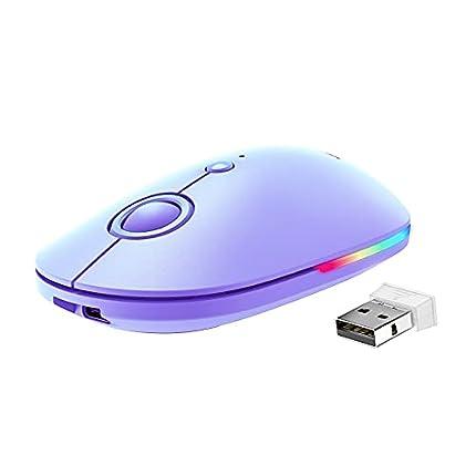 VicTsing Ratón Inalámbrico Silencioso, Mini Portátil 2.4G con Receptor, Ergonómico, 1600 dpi, Compatible con PC, Tableta, Computadora Portátil - Púrpura (04192018)