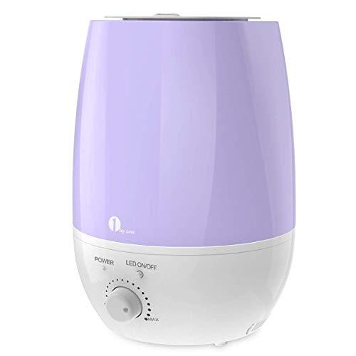 1byone Luftbefeuchter Ultraschall Ionen, 6 Liter Leise Raumbefeuchter mit Filter, Abschaltautomatik, LED Lichter für Baby und Kinder Raum