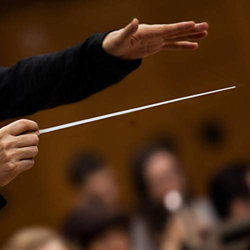 Bastón de músico Bastón de música profesional para dirección de conciertos(yellow)