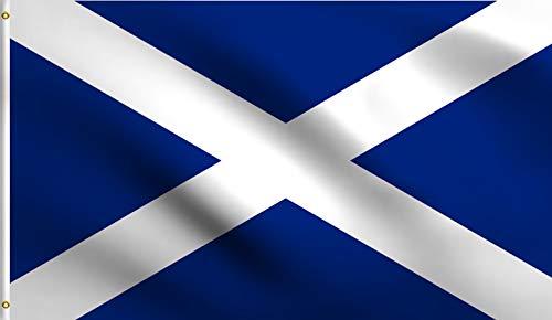 DMSE Saltire Saint Andrew's Cross Crux Decussata Scotland Scottish Flag 2X3 Ft Foot 100% Polyester 100D Flag UV Resistant (2' X 3' Ft Foot)