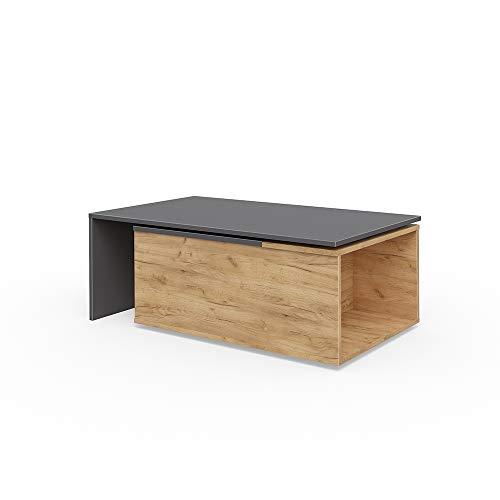Vicco Couchtisch Leo 60x100 cm Wohnzimmertisch Beistelltisch Kaffetisch Holztisch +++ INKL DREHBARER Platte UND EXTRA STAURAUM +++