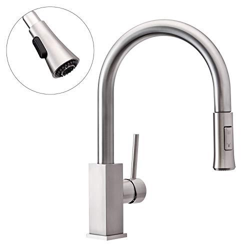 Wasserrhythm Stainless Steel Kitchen Sink Faucet with Pull Down Spray...