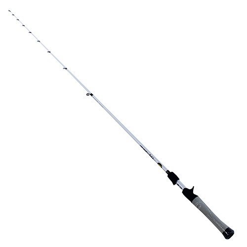 Lews Fishing TP170MH Lew's Fishing Tournament Performance Speed Stick Multi Purpose Casting Rod, Medium-Heavy Power, 7', Fast Action