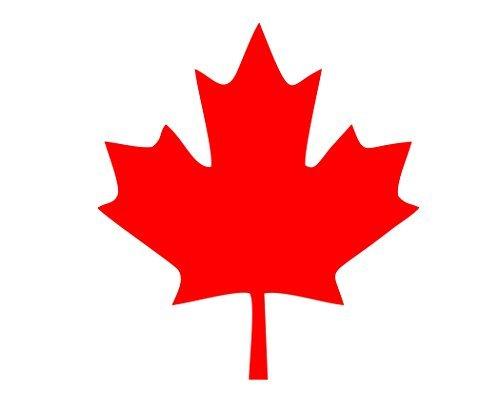 Pegatinas divertidas para motocicletas, hojas de arce canadiense, color rojo, para coche, portátil, 10,16 cm