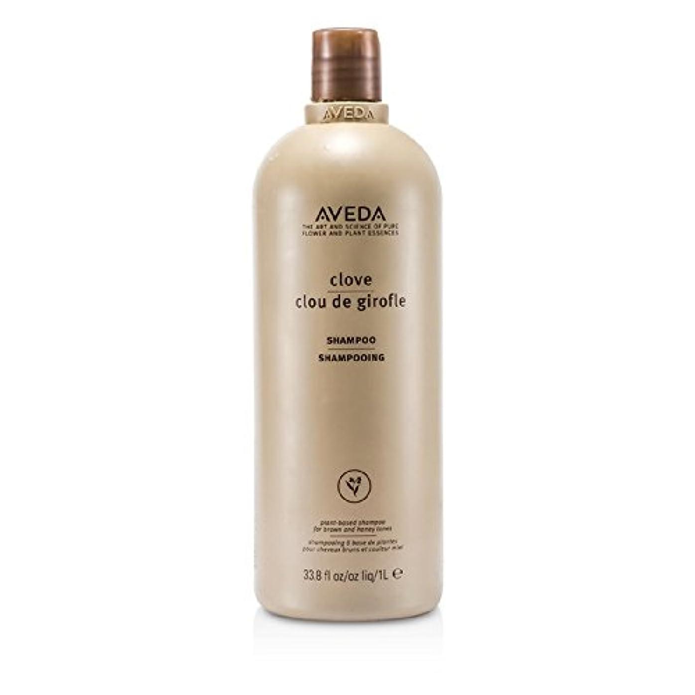 トレーニング美容師魅力的であることへのアピールアヴェダ クローブ カラーシャンプー 1000ml/33.8oz並行輸入品
