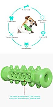 Tengcong Tech Brosse à Dents pour Chien à mâcher Jouets de Nettoyage des Dents Multifonction Chiot Molaire Stick Jouets dentaires Soins bucco-dentaires pour Chiens de Petite Taille et Moyenne (Vert)