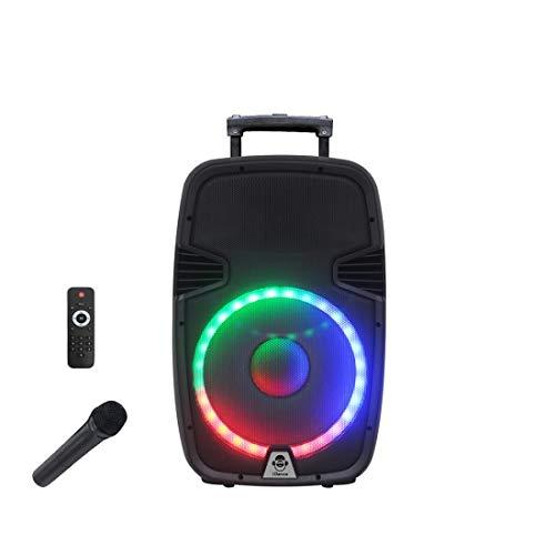 Idance Groove 1000 Altavoz Portatil Bluetooth con Micrófono Incluido y Karaoke, 1000W, Mando a Distancia, USB, SD Card