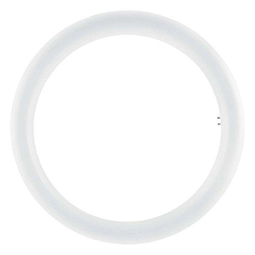 Osram - Tubo circular LED, 20 W, Blanco