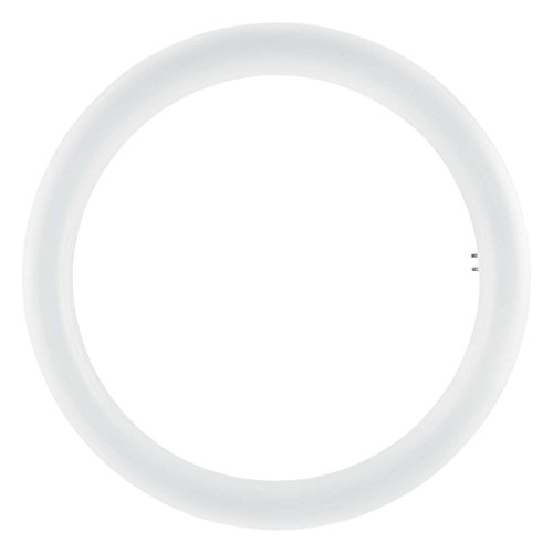 Osram - Lámpara led de repuesto, Base: G10q, 4000 K, 20 W, Repuesto para 32 W, Blanco frío