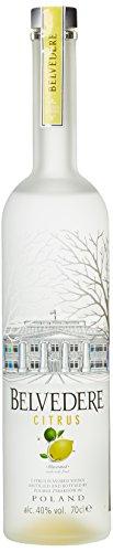 Belvedere Wodka Citrus (1 x 0.7 l)