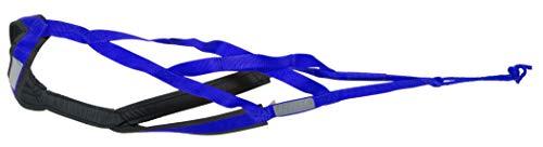Neewa X-Back Racing Harness (Large/X-Large, Blue)