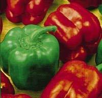 SANHOC Samen-Paket: Süße Paprika - n Wunder - 40 seedsSEED