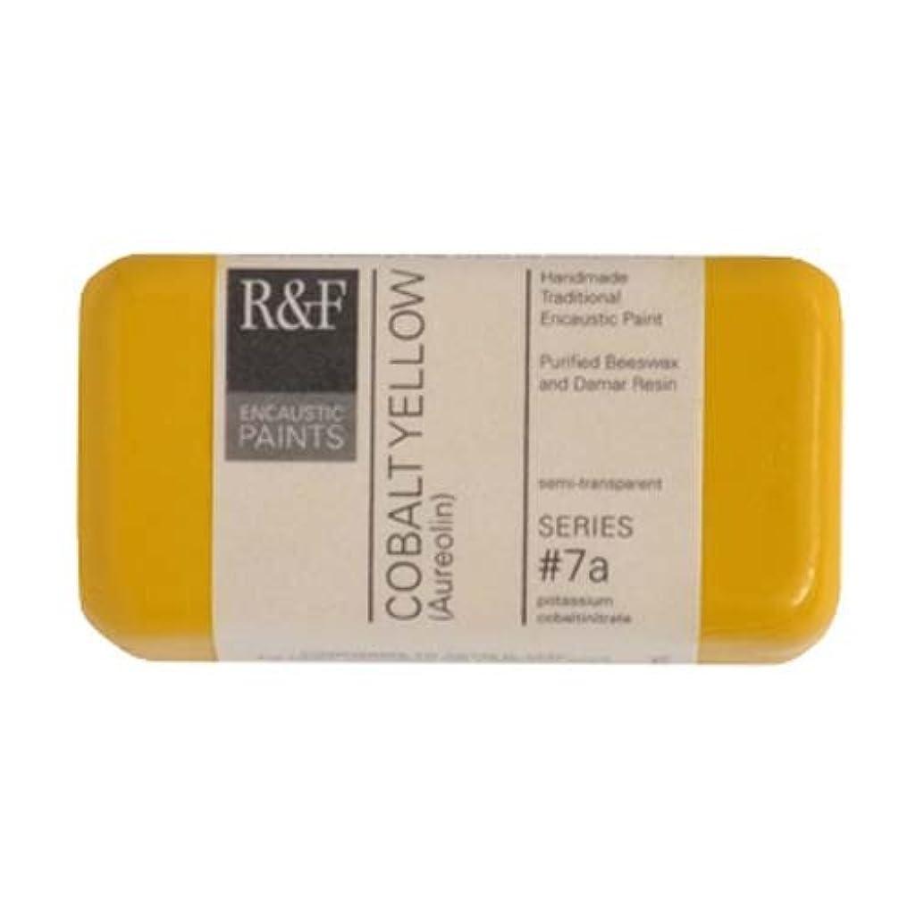 R&F Encaustic 40ml Paint, Cobalt Yellow ssjlpszgufvscci