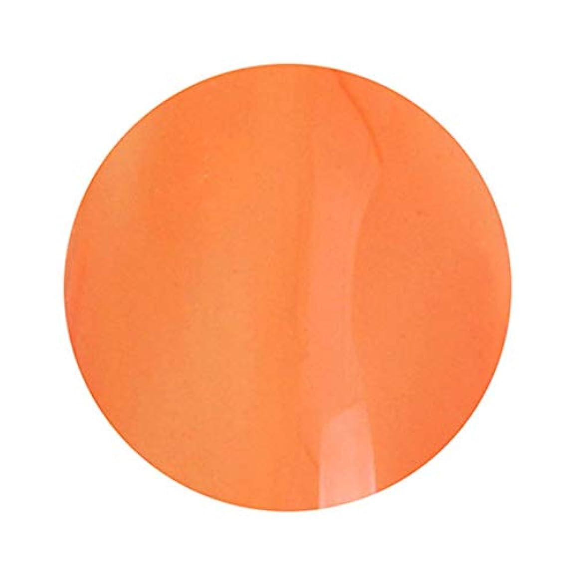 色合い近似色合いT-GEL COLLECTION ティージェルコレクション カラージェル D235 クリアダークオレンジ 4ml