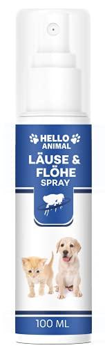 NEU: HelloAnimal LÄUSE & FLÖHE Spray für Hunde und Katzen bei Laus, Floh & Ungeziefer Befall - Flohschutz für Ihr Haustier mit SOFORTWIRKUNG