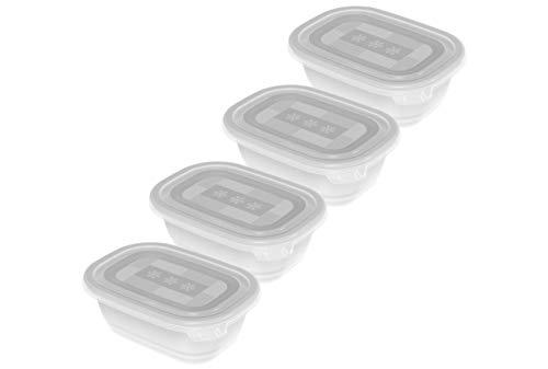 Rotho Freeze 4er-Set Gefrierboxen 0,5l mit Deckel, Kunststoff (PP) BPA-frei, transparent, 4 x 0,5l (15,5 x 11,0 x 10,5 cm)